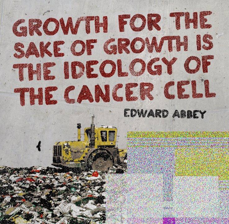 Réflexion sur la croissance sans but