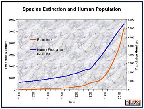 Image représentant la corrélation entre l'augmentation de la populaiton humaine et l'intinction des espèces